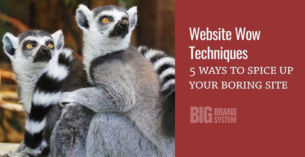 website-wow-techniques